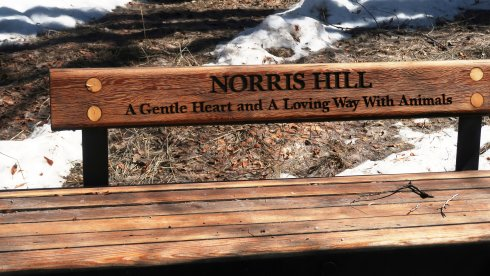 norris-hill-bench-in-Aspen-2.JPG